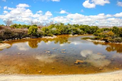 Lagune hinter dem Playa las Bachas
