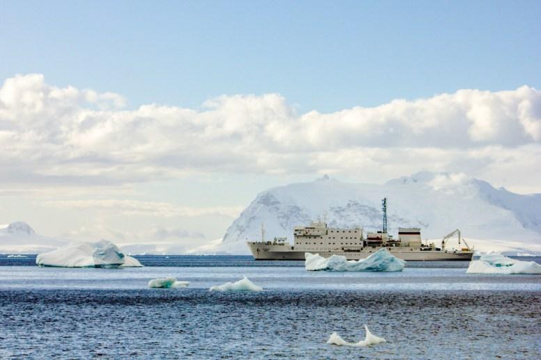 Die Ioffe im Eismeer
