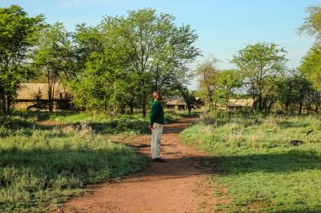 Im Katikati Camp