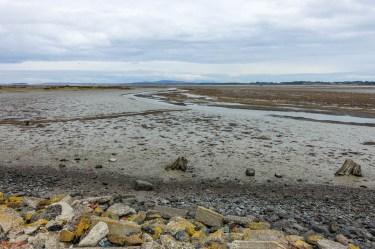 Ebbe im New River Estuary