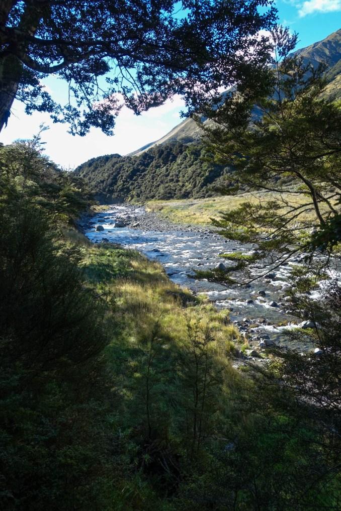 48. Tag (14,5km) - Boyle Village Boyle Flat Hut: Boyle River