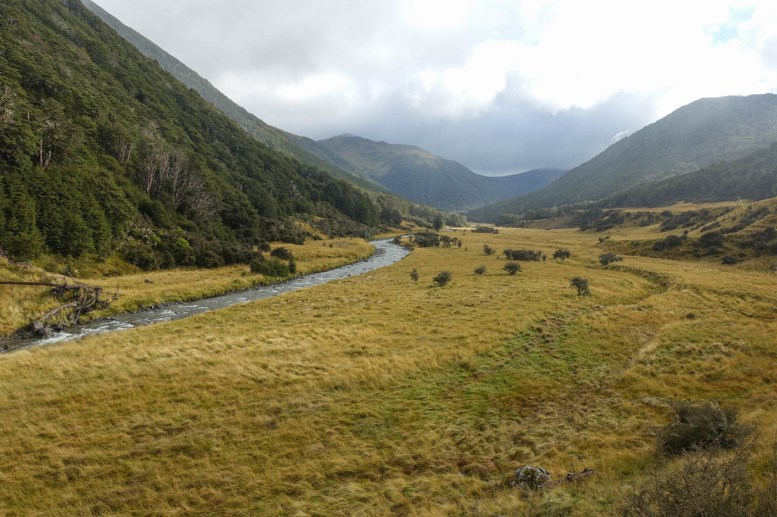 50. Tag (28km) - Rokeby Hut bis Camp at Waiau River, alles wieder fit