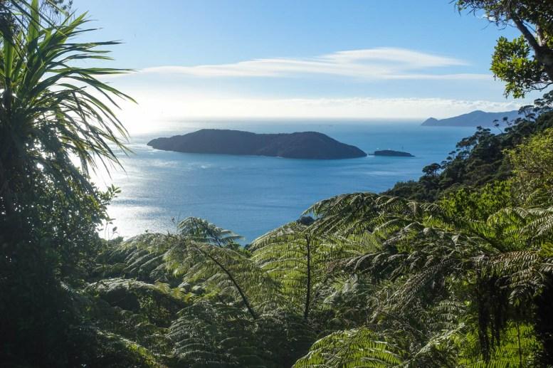 63. Tag (5,4km) - Camp Bay bis Ship Cove: Blick vom Sattel