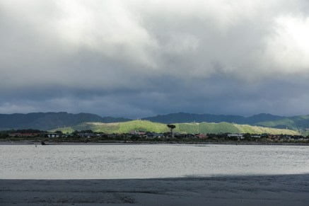 Blick auf Waikanae Beach