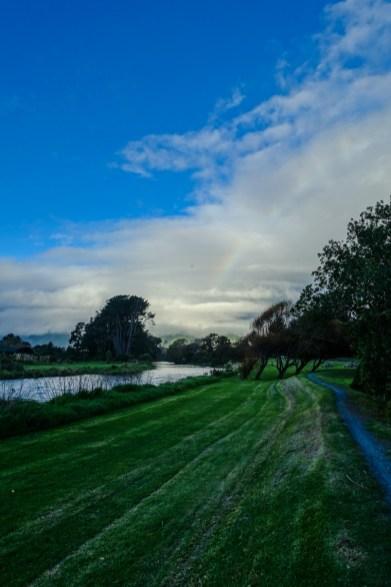 Waikanae Estuary Walkway