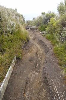 Ausgewaschener Weg nach Whakapapa