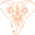 bg-elephant-orange