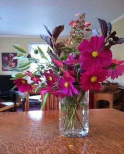 cosmos bouquet plus living room 003