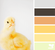 design seeds chick palette