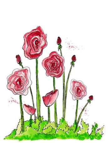 Red Ranunculus, pen and Inktense pencils.  4.25 x 5.5 in. © 2015 Sheila Delgado