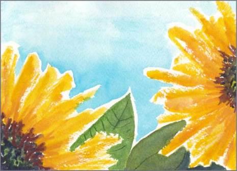 Sunflowers 2. Watercolor on Arches 140 lb. cold pressed paper. © 2016 Sheila Delgado