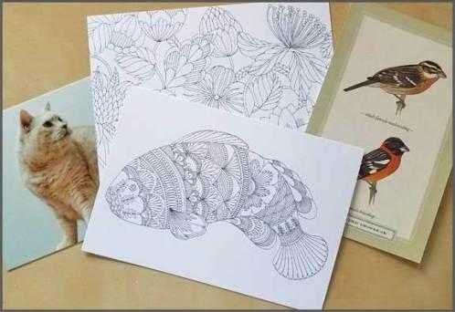 Sharon-Lane-bonus-cards