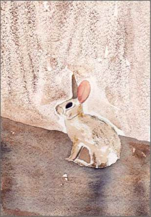 Botched Bunny, 4 x 6 in. watercolor on Strathmore 140 lb. cold pressed paper. © 2018 Sheila Delgado.