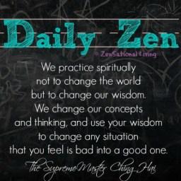 Daily ZenHai 8