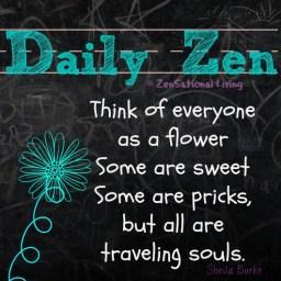 daily zen 1