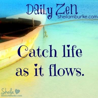 daily zen mar 14
