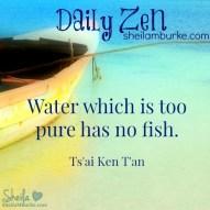 daily zen mar 21