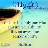 daily zen mar 27