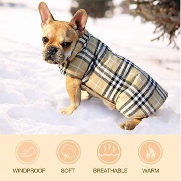 cappottino_scozzese_cani1