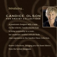 Pin Did Candice Olson Have Plastic Surgery Ajilbabcom ...