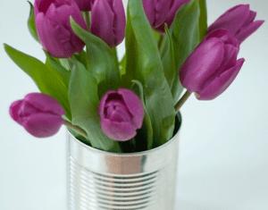 Ideas About Tulips In Vase On Pinterest Tulip