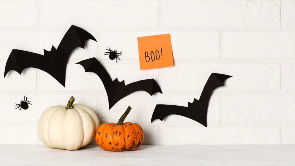 Halloween Costumes and decor