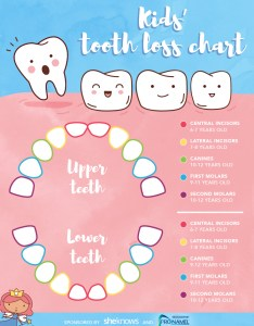 More on losing teeth also  timeline for your child   tooth loss sheknows rh
