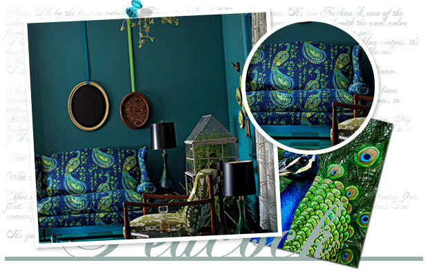 peacock living room inspired window curtains the inspiration board turquoise sheknows