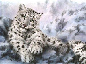 snow-leopard-portrait
