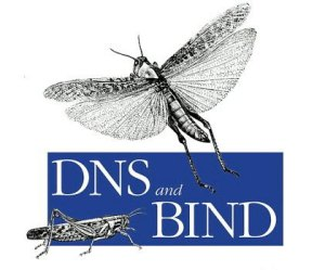 Testing tool for DNS migrations