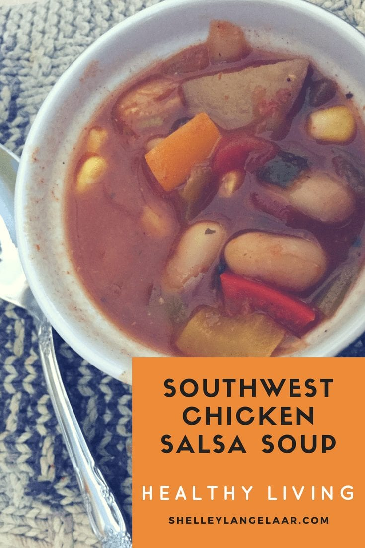 Southwest chicken salsa soup spicy
