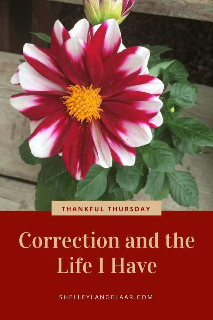 Thankful Thursday correction and the life I have