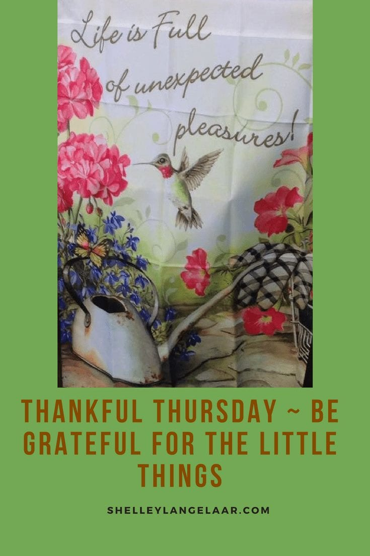Thankful Thursday ~ Be Grateful For The Little Things