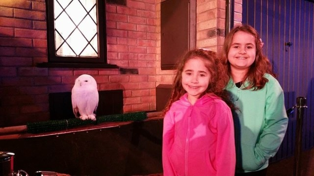 Harry Potter Studio Tour - Kaycee and Ella with a snowy owl