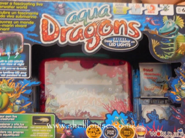 Aqua Dragons from Wicked Uncle