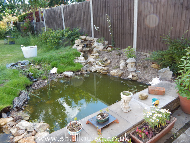 Newly built garden pond