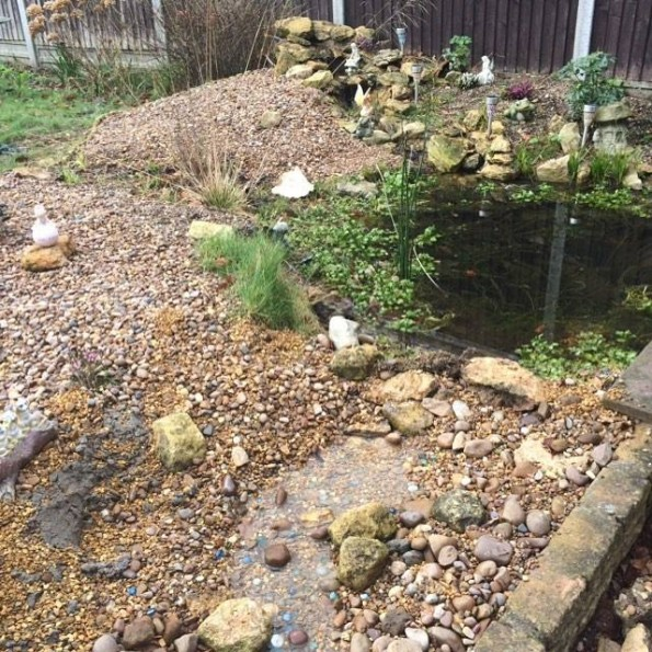 Pond and stream water feature #1Day12Pics