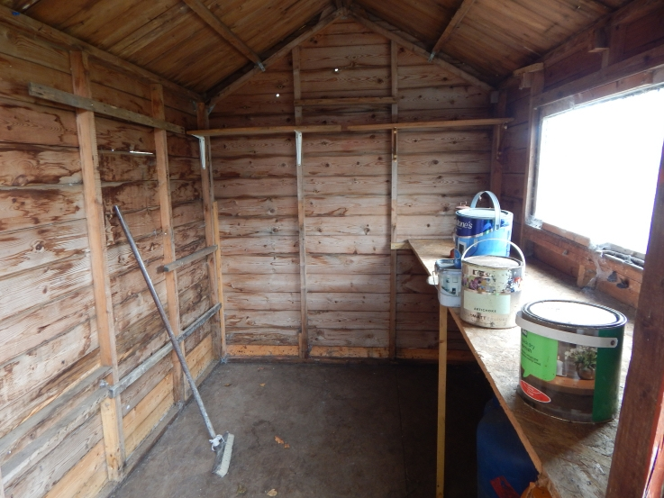 empty shed #PimpMyShed