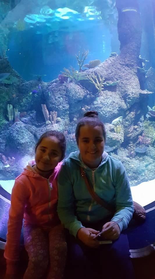 skegness-aquarium-01