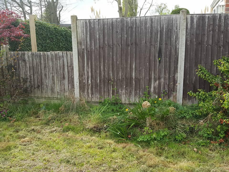 Garden border before