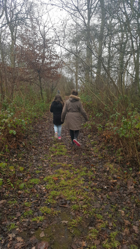 Rainy walk in Hill Holt Wood