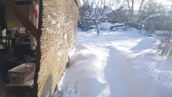 Snow day February 2018