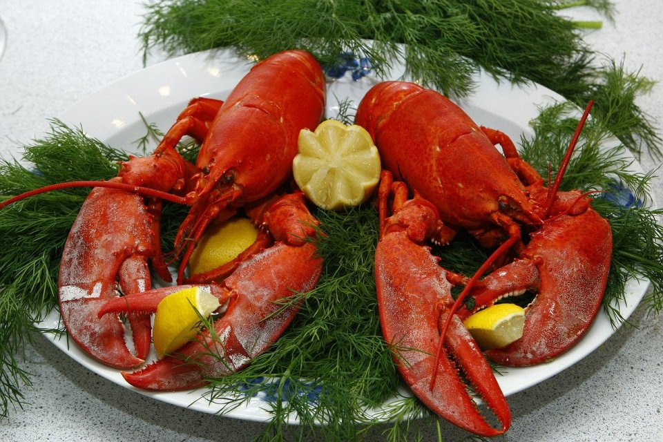 Lobsters - expensive foods
