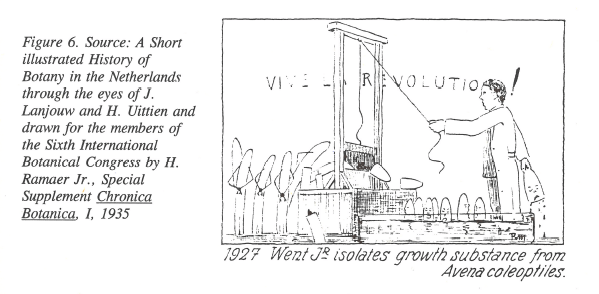 Fig3_Revolution