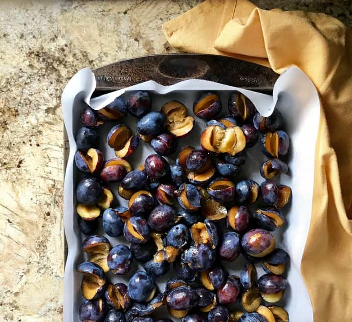 A large baking pan with sliced prunes about to be roasted.