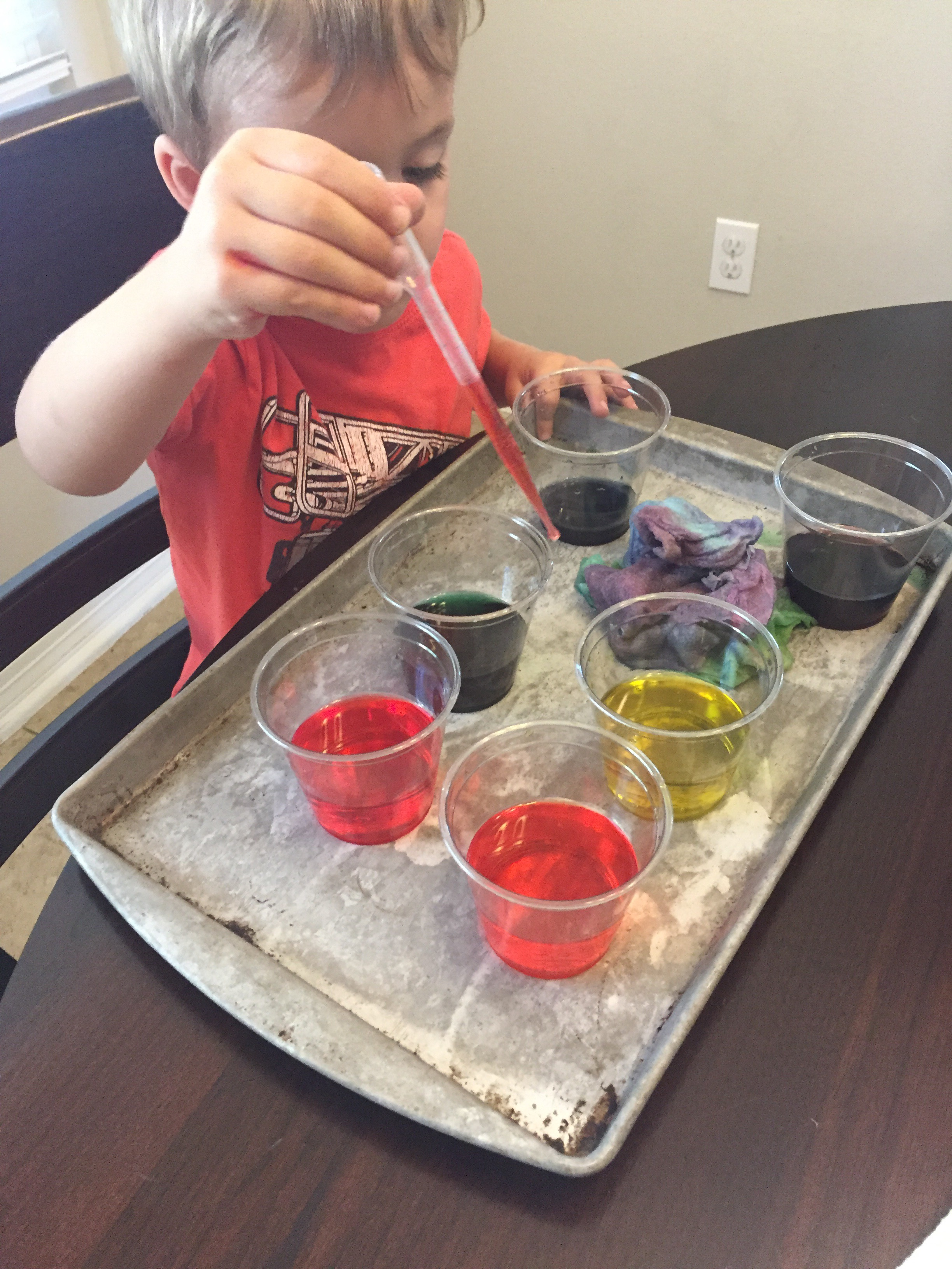 Color Mixing: Walking Water Rainbow | She Loves Science