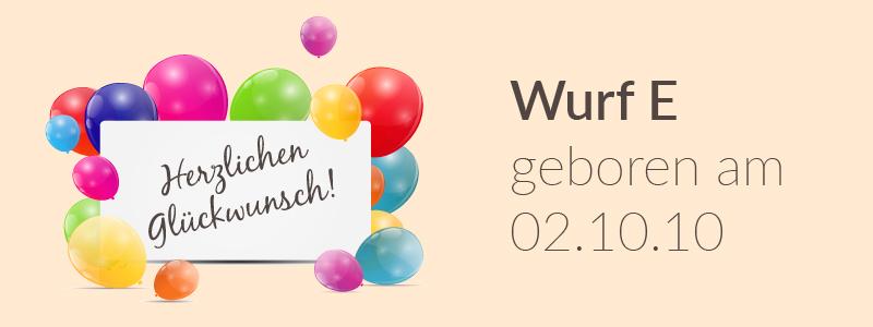 Der E-Wurf hat Geburtstag