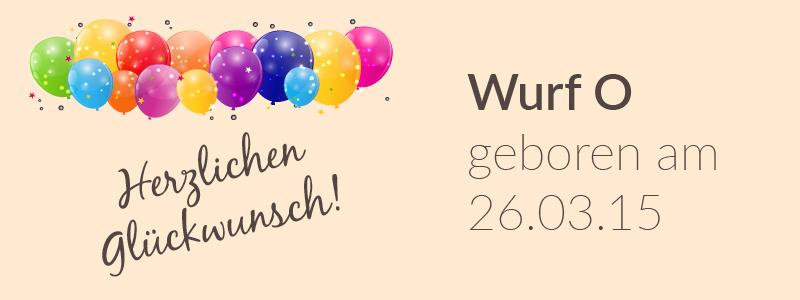 Der O-Wurf hat Geburtstag