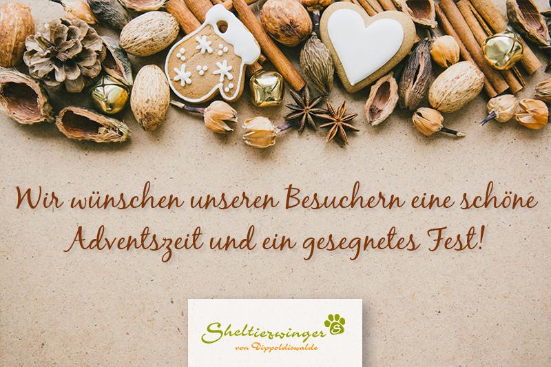 Der Sheltiezwinger Dippoldiswalde wünscht eine schöne Adventszeit und ein gesegnetes Fest!