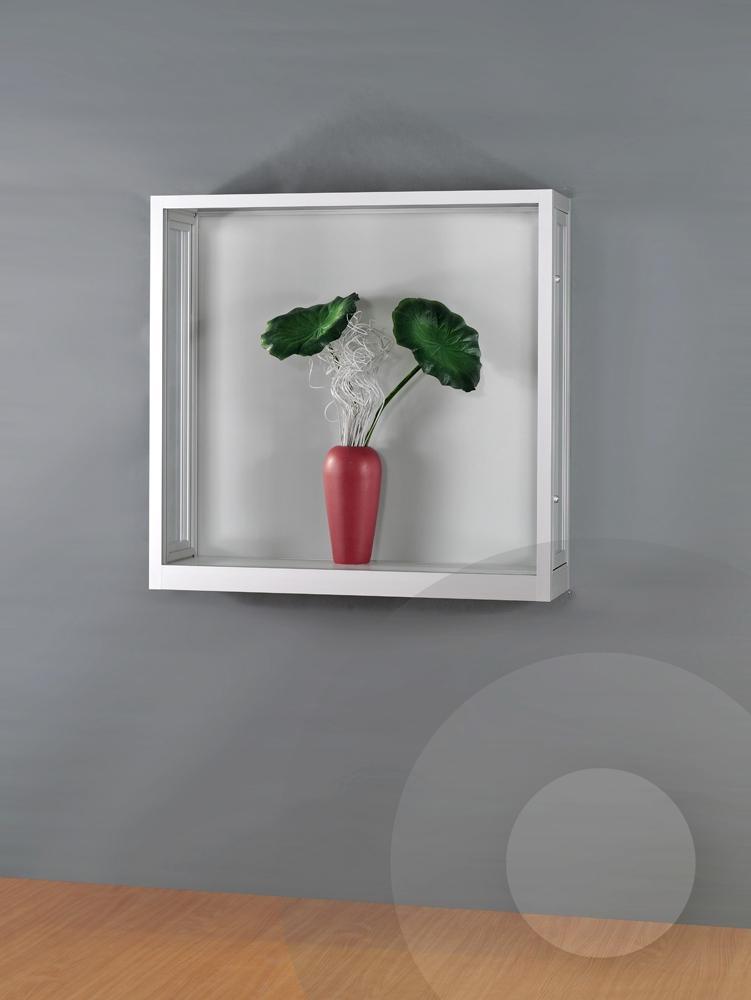 Dustproof Wall Display Cabinet